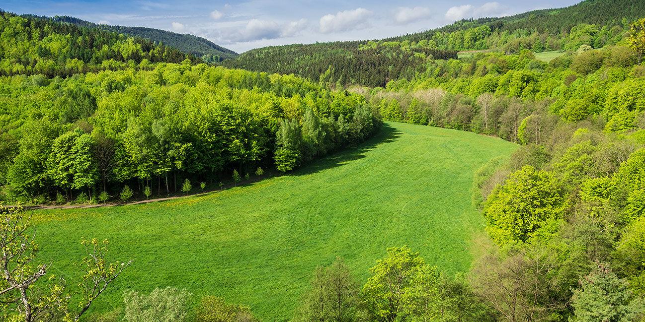 Ausblick auf den Thüringer Wald