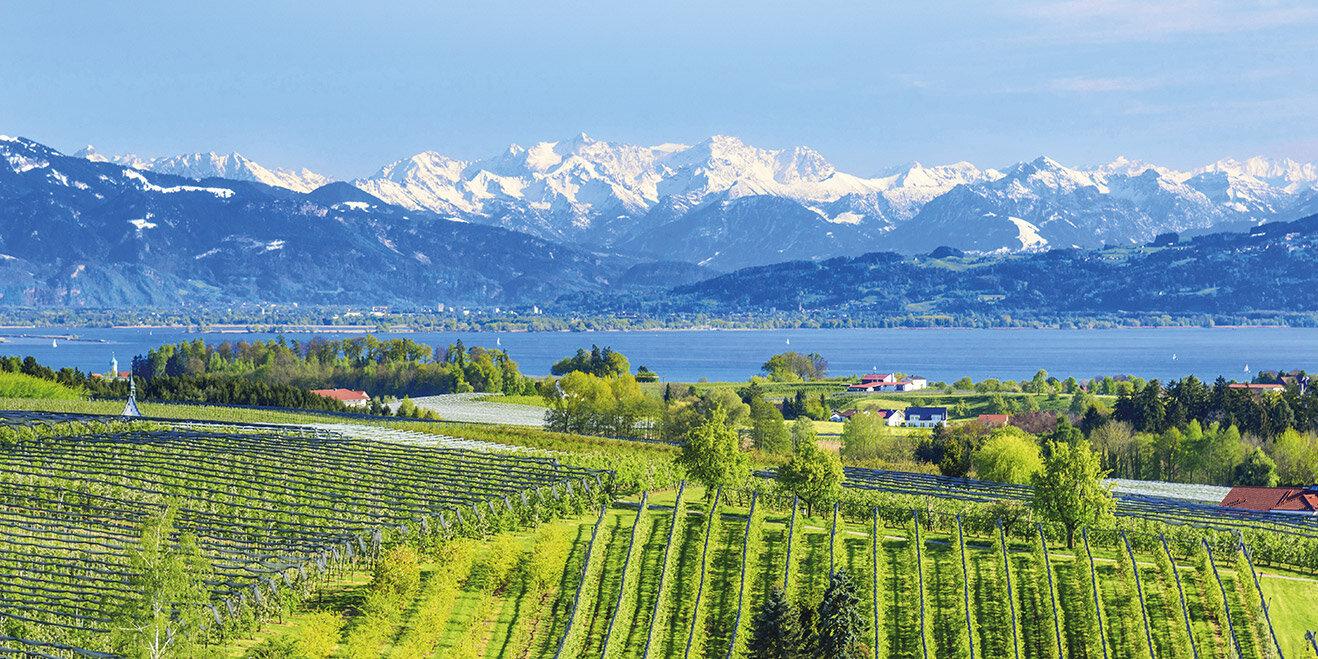 Traumhafte Landschaften am Bodensee