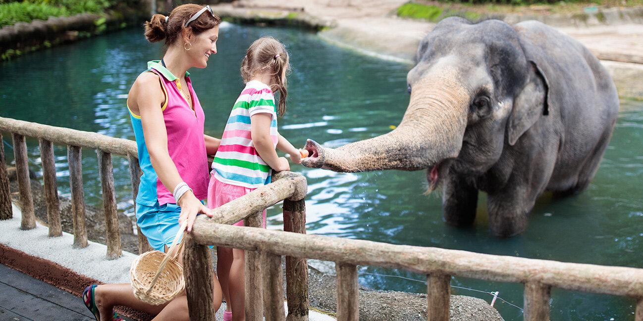 Familie im Zoo