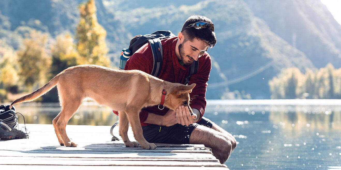Ferien mit Hund am See