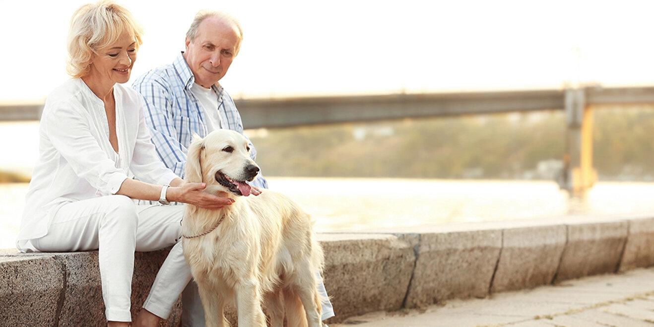 Senioren-Paar mit Ihrem Hund