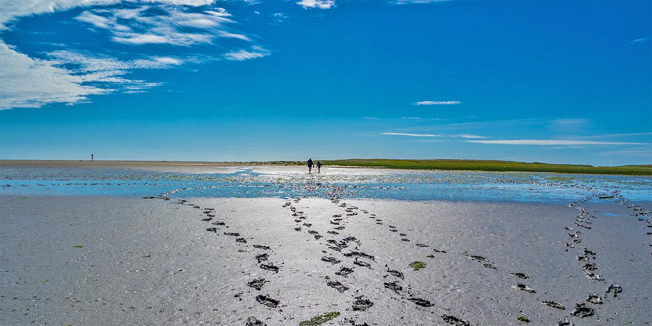 Wattwanderung im Wattenmeer Nordsee
