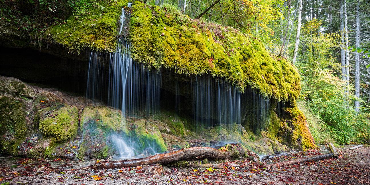 Wutachschlucht im Hochschwarzwald