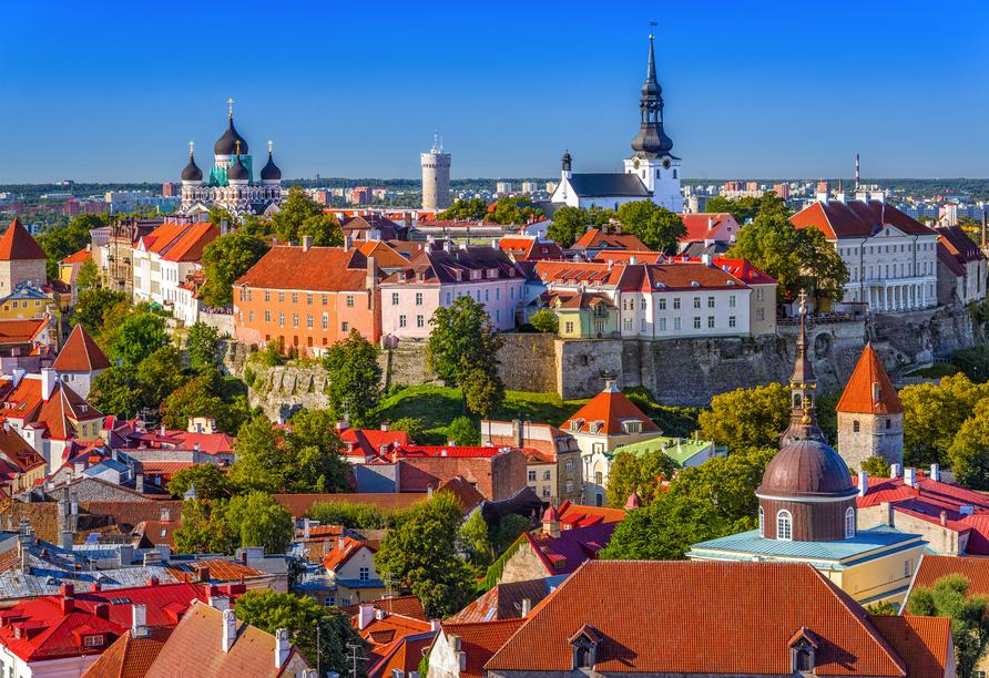 MSC Preziosa, Tallinn, Estland Skyline
