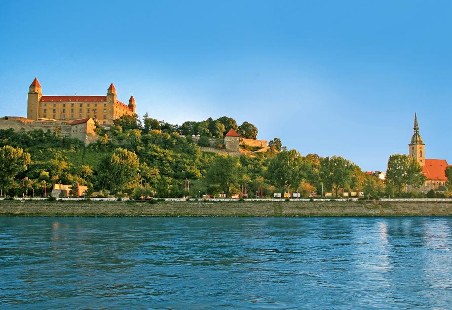 MS Aurelia, Bratislava