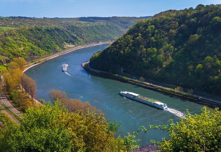 MS Switzerland, Außenansicht