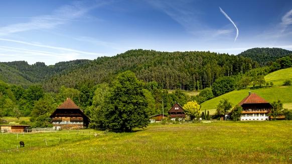 Hotel Restaurant Krone Wolfach im Kinzigtal im Schwarzwald, Landschaft
