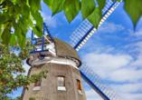 Ferien Hotel Lewitz Mühle, Windmühle
