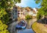 MS VistaSerenity, Straßburg