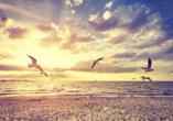Spazieren Sie am Strand und atmen Sie die frische Meerluft ein.