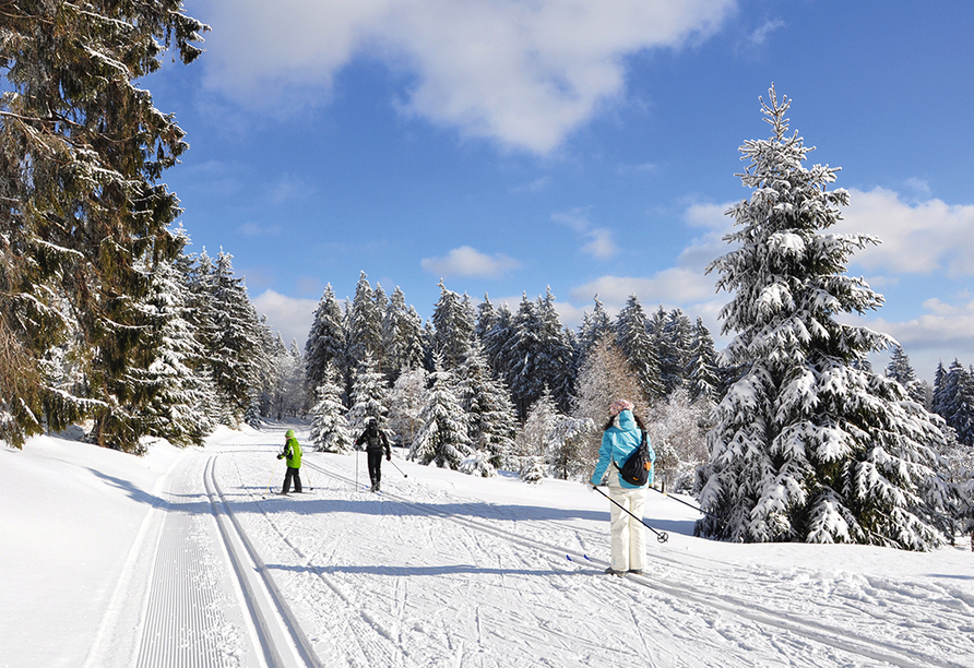 Waldhotel Hubertus in Eisenfeld, Wintersport im Thüringer Wald