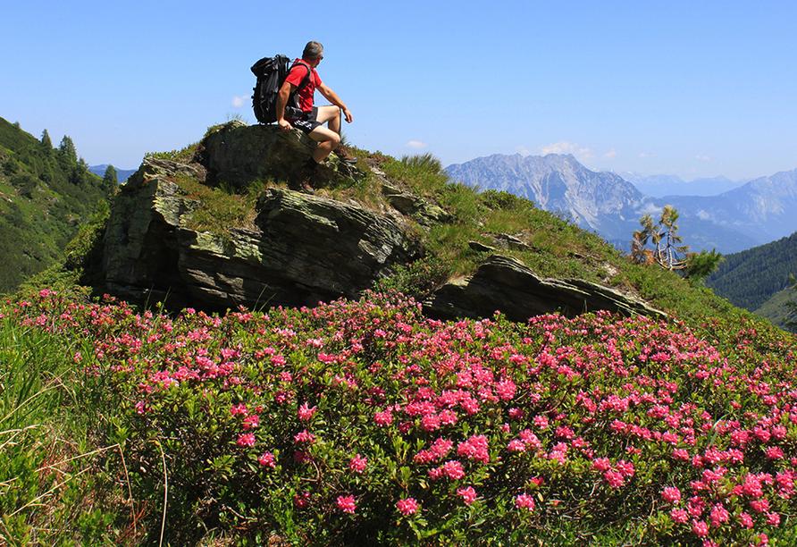 JUFA Schladming in der Steiermark  Wandern