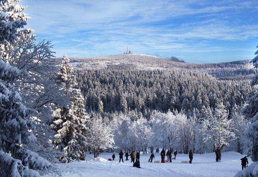 Wald-Landhaus in Goslar-Hahnenklee, Winter