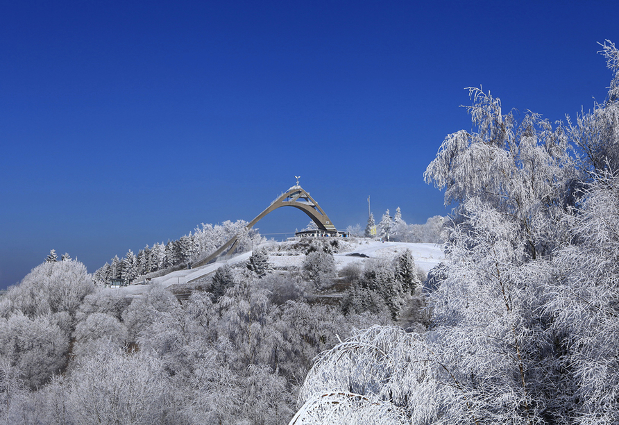 Panorama Hotel Winterberg, Skisprungschanze