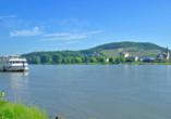 Rheinhotel Vier Jahreszeiten, Ausblick von Bad Breisig