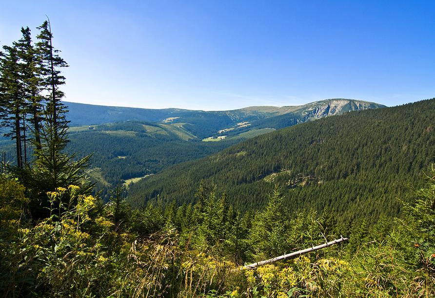 Spa & Wellness Hotel St. Moritz, Tschechischer Wald