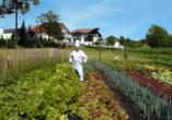 Hotel Würdinger Hof in Bad Füssing im Bäderdreieck, Gemüsegarten