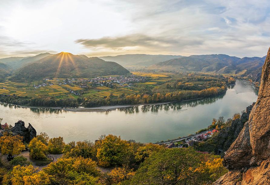 MS Ariana, Donau