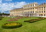 MS Ariana, Schloss Schönbrunn Wien