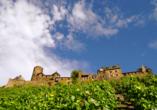 Mosel-Traumpfade, Burg Thurant