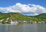 Hotel Moselblick in Winningen an der Mosel, Ausflugsziel Alken
