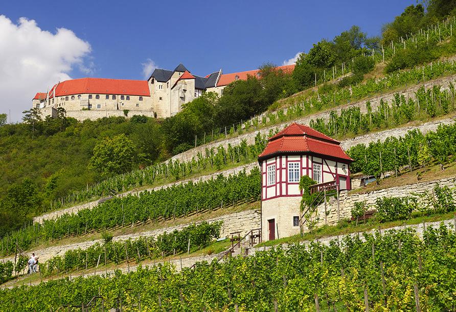 Hotel Bibermühle, Bad Bibra, Burgenlandkreis, Sachsen-Anhalte, Freyburg