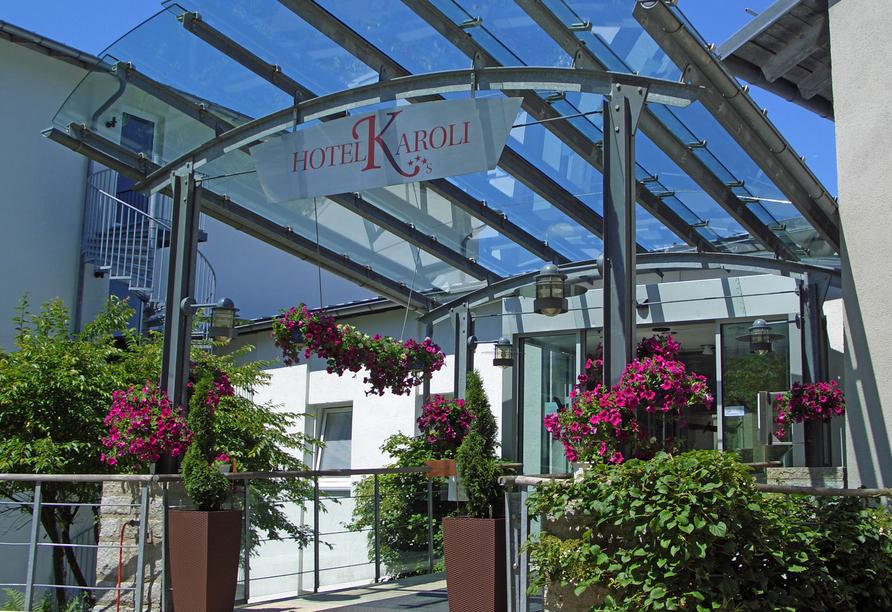 Michel Hotel Karoli Waldkirchen Bayerischer Wald, Eingang