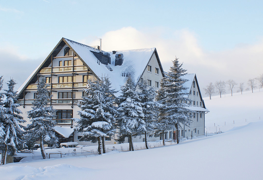 Hotel Alpina Lodge Oberwiesenthal, Winter