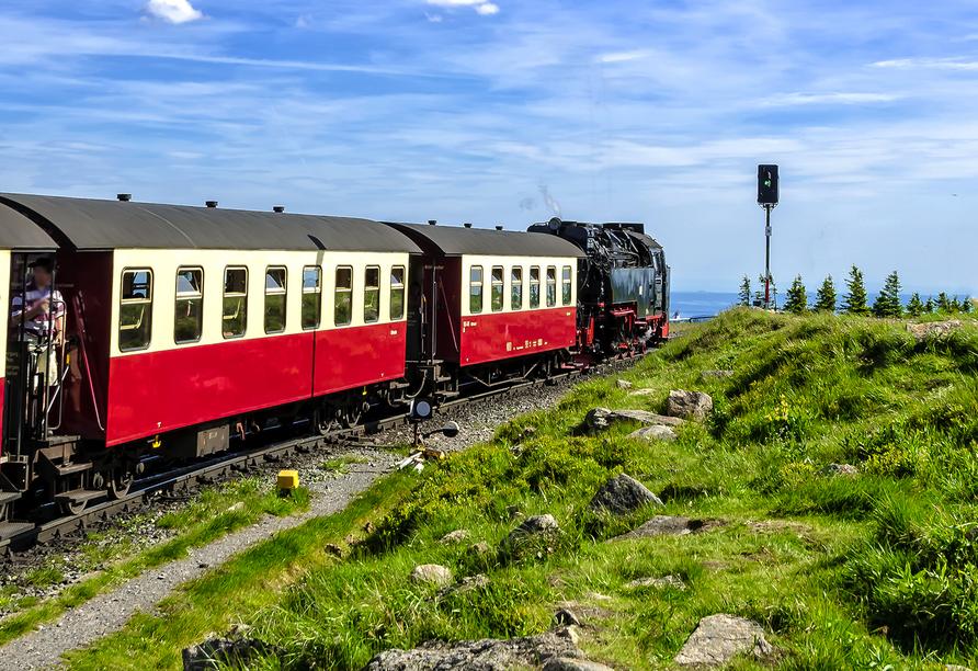 Wald-Landhaus in Goslar-Hahnenklee, Schmalspurbahn
