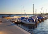 Der Stadthafen Senftenberg ist der ideale Ausgangspunkt für Bootsfahrten durch das Lausitzer Seenland.