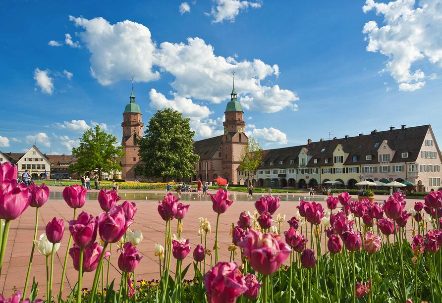Bekannt ist Freudenstadt vor allem für den größten bebauten Marktplatz Deutschlands.