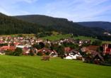 Hotel Hirsch, Zwieselberg, Freudenstadt, Schwarzwald, Baiersbronn