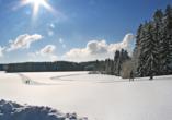 Landhotel Rosenberger in Wegscheid im Bayerischen Wald, Winterlandschaft