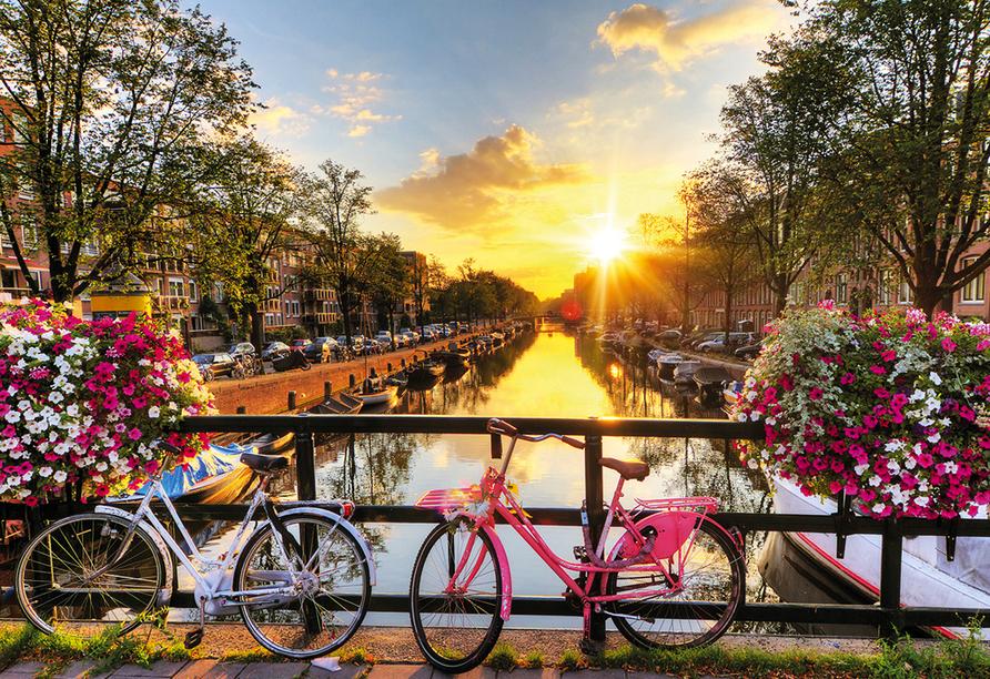 MS Asara, Höhepunkte in Holland, Amsterdam