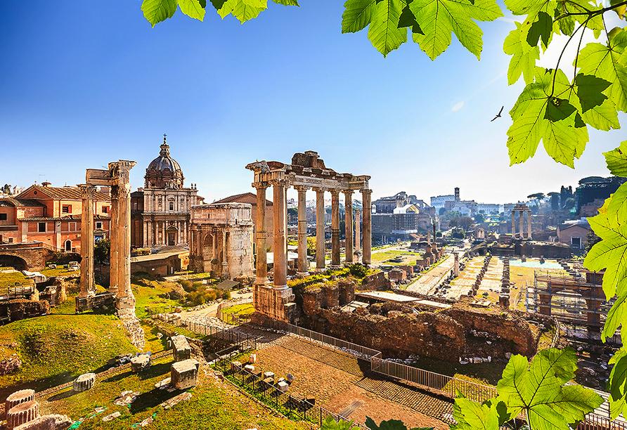 Hotel Villa Grazioli in Rom, Forum Romanum