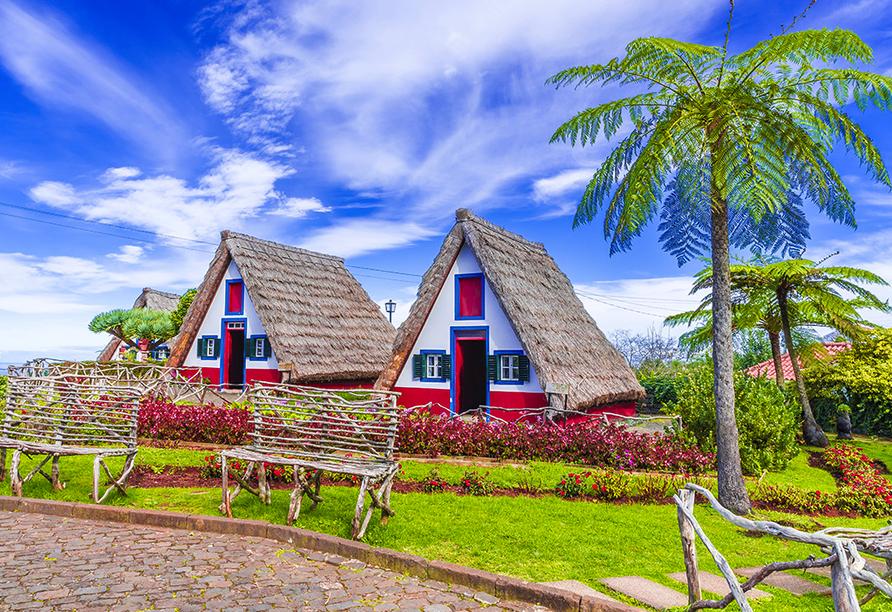 Melia Madeira Mare Resort & Spa, Häuser