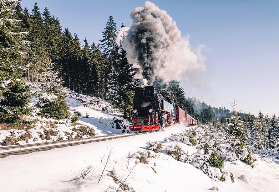 Mühl Vital Resort, Brockenbahn