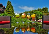 Kormoran Wellness Medical Spa, Rowe, Polnische Ostsee, Polen, Garten