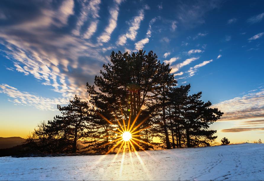 Genießen Sie schöne Sonnenuntergänge.