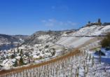 Hotel Weinhaus Traube, Weinberge im Winter