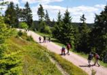 Berghotel Mellenbach in Mellenbach - Glasbach, Ausflugsziel Thüringer Wald