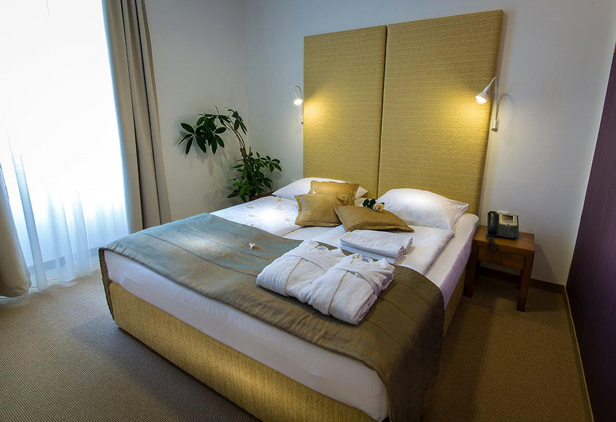 Hotelkomplex Rimske Terme in Rimske Toplice, Zimmerbeispiel Zdraviliski Dvor