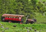 Mystisches Rumänien, Kutschfahrt