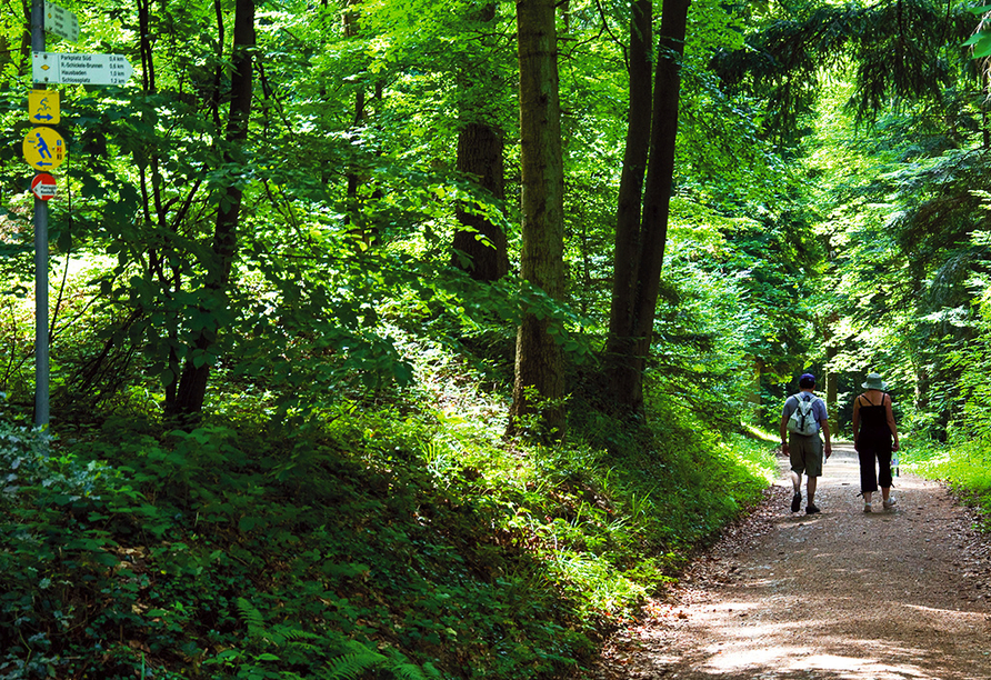 Fini-Resort Badenweiler, Wandern