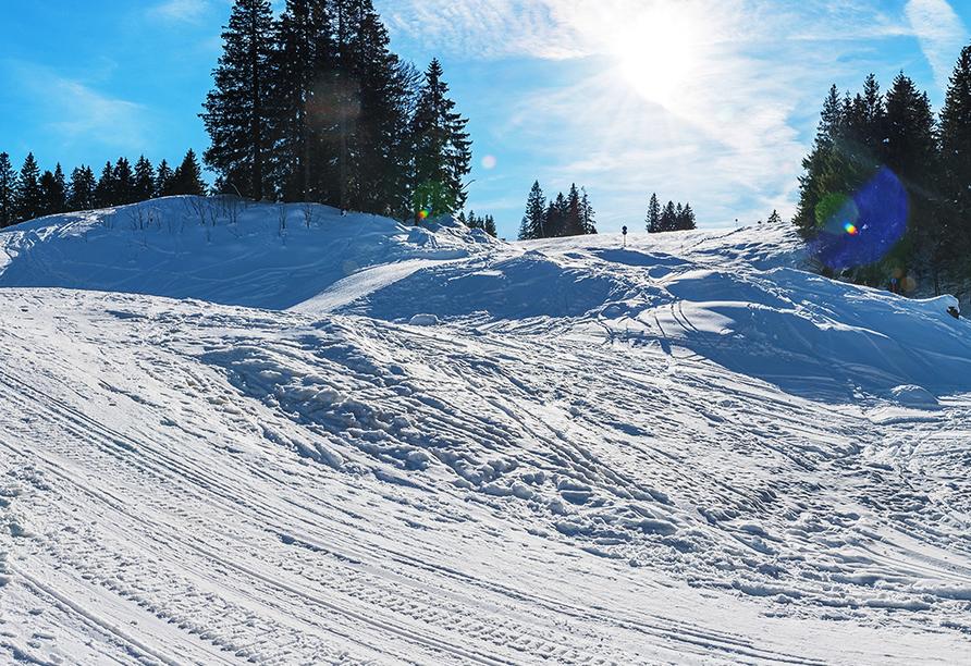 Fini-Resort Badenweiler, Skigebiet Feldberg