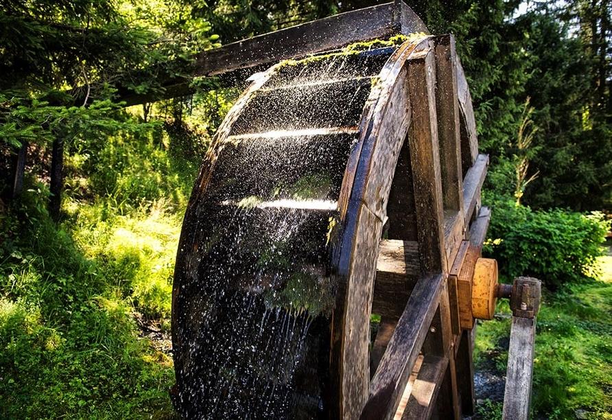 Hotel Walpurgishof Goslar-Hahnenklee Harz, Oberharzer Wasserwirtschaft