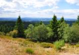 Waldhotel Feldbachtal in Lichte im Thüringer Wald, Rennsteig