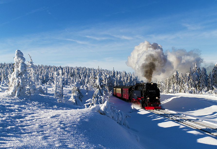 Hotel Zum Harzer Jodlermeister Altenbrak, Ausflugsziel Brockenbahn Winter
