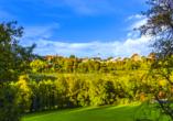 Vitalhotel König am Park in Bad Mergentheim im Tal der Tauber, Landschaft
