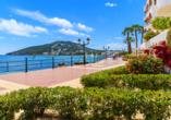 Hotel Alua Miami Ibiza auf Ibiza in Es Canar, Santa Eulalia
